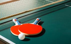 tavolo ping pong fatto in casa