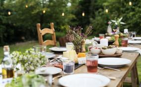 festa, giardino, pulizia