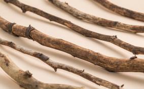 ramoscelli centrotavola