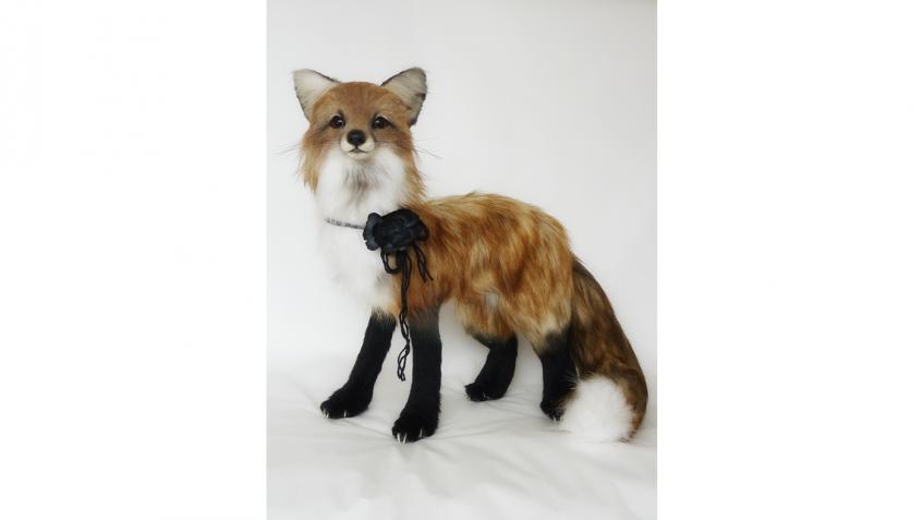 Kaleideascope: faccio peluche ma non chiamateli orsetti