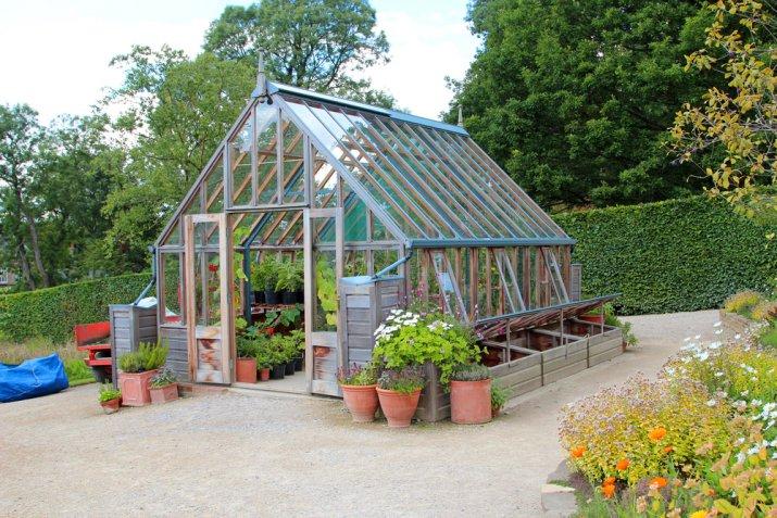 piante freddo, proteggere piante freddo, piante inverno