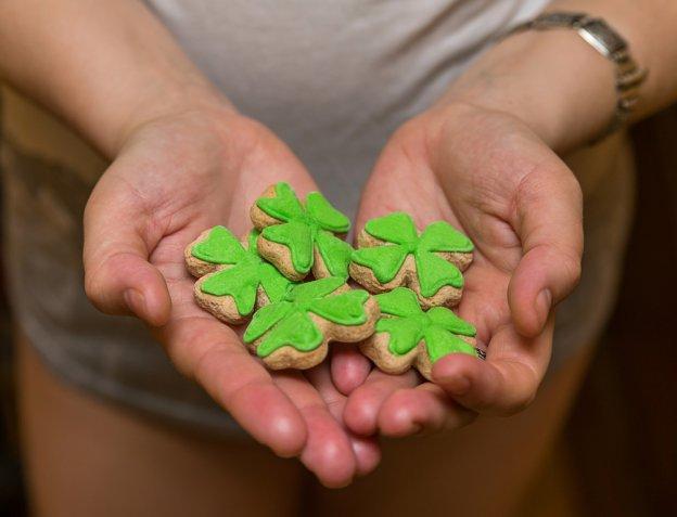 Biscotti decorati con la pasta di zucchero, 10 idee sfiziose