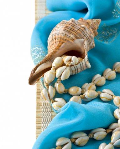 Lavoretti con le conchiglie di mare, 10 idee creative