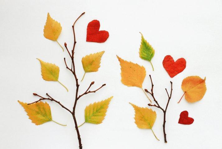 lavoretti foglie secche, lavoretti autunno bambini