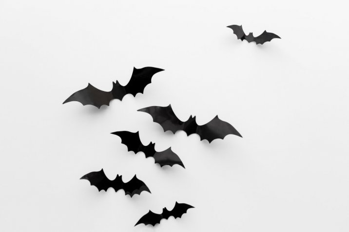 Lavoretti di Halloween con il cartoncino: 5 idee facili per i bambini