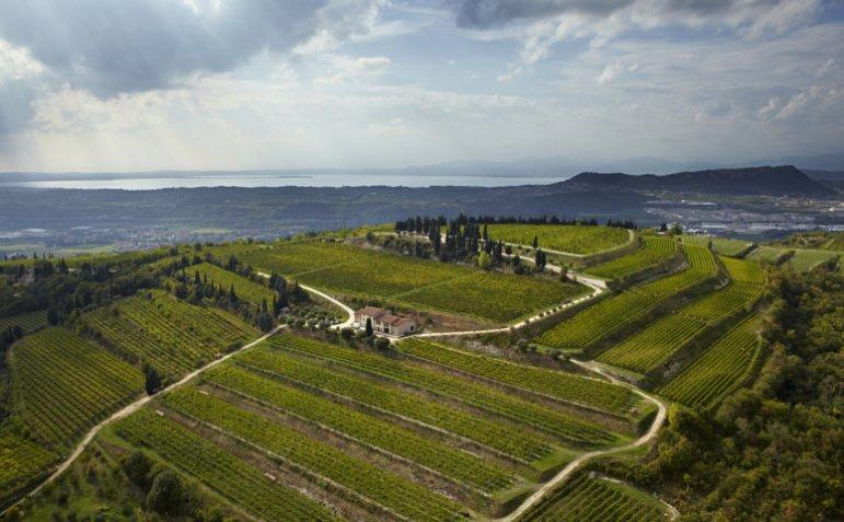 Allegrini Winery, vista aerea del podere La Grola