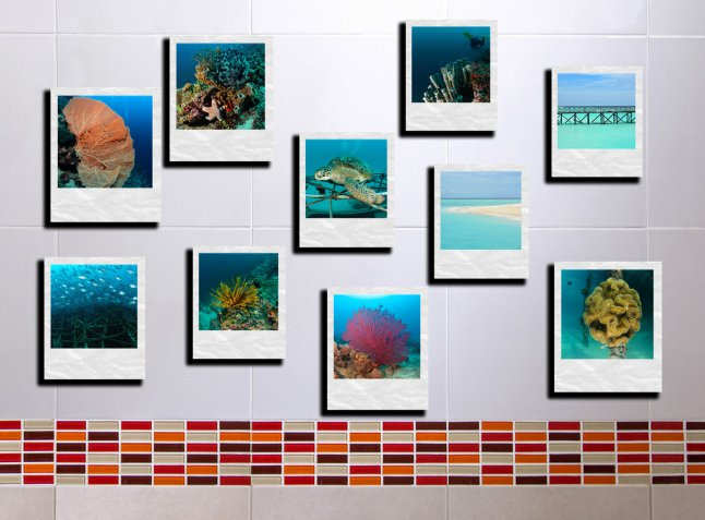 foto effetto polaroid, collage foto fai da te