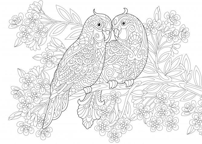 Disegni antistress da colorare per adulti: 9 immagini gratis e bellissime