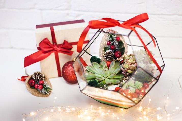 Cosa regalare a Natale a chi ama il giardinaggio: 5 idee originali