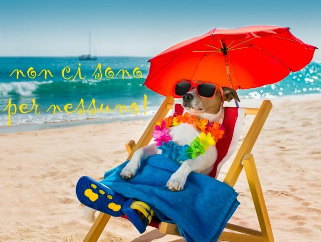 Immagini vacanze estive divertenti: le più belle da non perdere