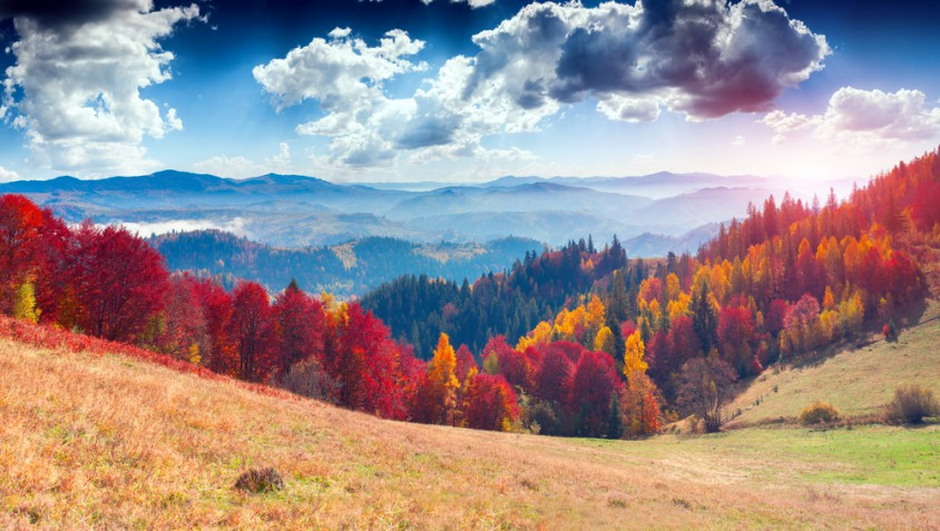 Sfondi autunno desktop gratis: 18 immagini che fanno sognare