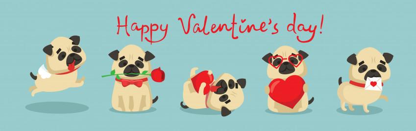 San Valentino: 7 immagini divertenti per fare gli auguri