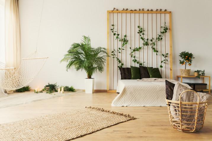 Arredare con le piante da interno: 7 soluzioni per la casa