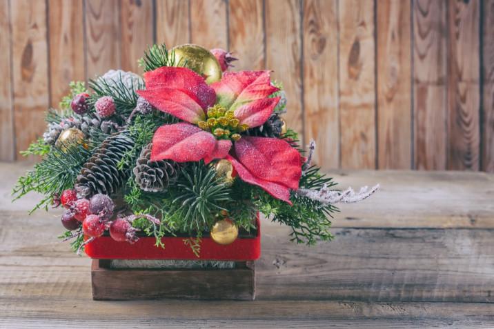 Centrotavola di Natale con corteccia, pigne e candele: 5 idee per ispirarsi