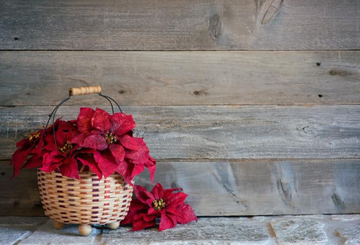 Centrotavola invernale fai da te: 5 idee a cui ispirarsi
