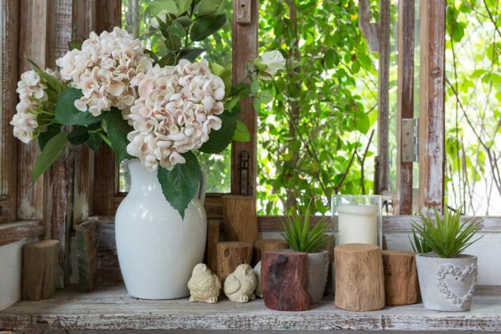 Come sistemare le piante grasse in casa: 9 idee per arredare