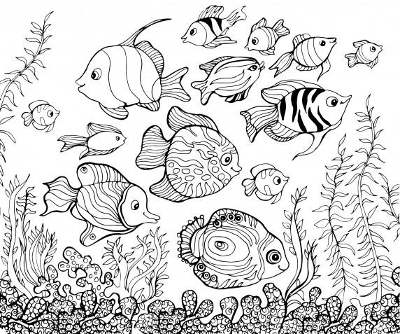 Disegni da colorare estate: 9 immagini da scaricare gratis