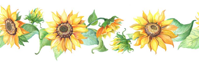 Girasoli decoupage da stampare gratis: 9 disegni vivaci