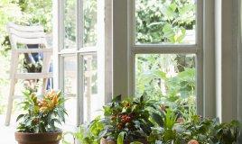 casa legno risparmio vantaggi svantaggi crisi ecologia efficienza energetica