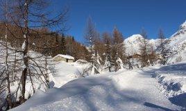 trekking sci di fondo trentino inverno neve