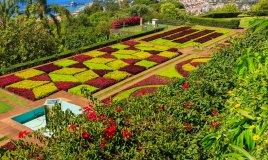 Madera Portogallo viaggi natura isola