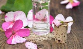 olio di geranio per un rimedio ECO