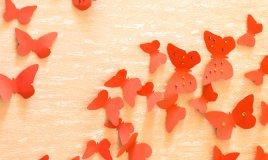 farfalle carta decorazione parete