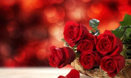 rosa fiore sogno interpretazione