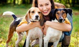 cuccioli, cani, gatti, roditori, figli, consigli, donne, donna, animali, domestici, amici, a, quattro, zampe