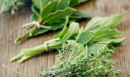 erbe spezie utilizzo consigli cucina