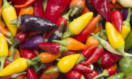 peperoncino conservazione utilizzo consigli varietà