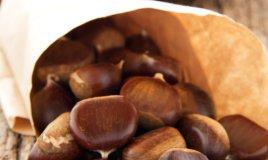 castagne marroni consigli autunno proprietà