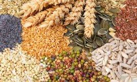 mangiare ecologico cucina sostenibile regole per risparmiare non sprecare