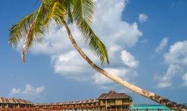 Maldive viaggio atollo coralli barriera reef