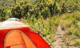 campeggio viaggi turismo sostenibile natura
