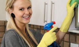 pulizia forni microonde superfici