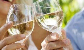 vino alimentazione tavola salute bere