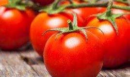 pomodori-cucina-varietà