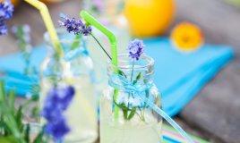 eco party festa risparmio natura