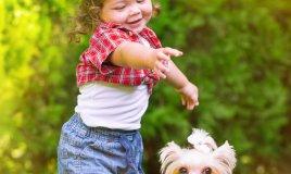 cane, fido, scelta, bambini, amicizia