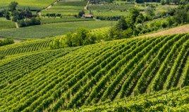5 destinazioni da sogno in Italia per le tue vacanze a settembre