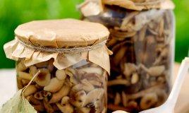 funghi chiodini conserva sale barattolo