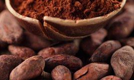 cacao proprietà