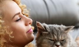 gatto adatto personalità tipo di vita