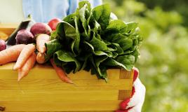 La frutta e verdura di stagione a giugno