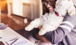 Alleati a 4 zampe: gli animali contro stress e malattie