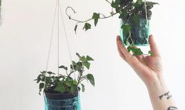 Costruire un giardino verticale in casa utilizzando le bottiglie di plastica