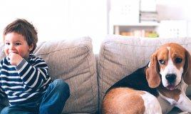 Il divano giusto? 5 aspetti da prendere in considerazione