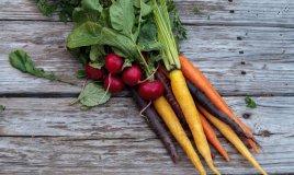 ravanelli, carote, insalata