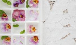 idee aperitivo estivo, cubetti ghiaccio fiori, cubetti ghiaccio frutta